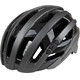 Alpina Campiglio Helmet titanium-black